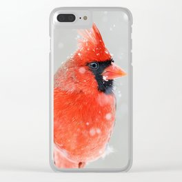 Male Northern Cardinal Clear iPhone Case