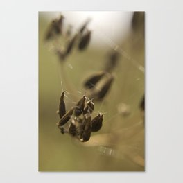 Macro flower 7 Canvas Print