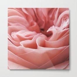 Blushing Swirl Metal Print