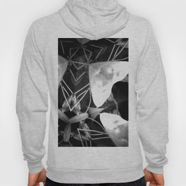 Plant Life After Dark Hoody