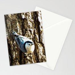 Nosey Nuthatch Stationery Cards