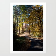 Kiroli Park, part two Art Print
