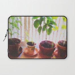 Kitchen Garden Laptop Sleeve