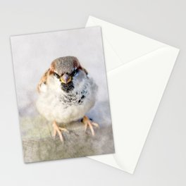 Don't Mess With Sparrows Stationery Cards