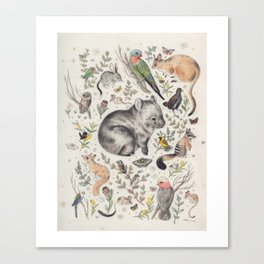 Australian Native Animals and Birds Canvas Print