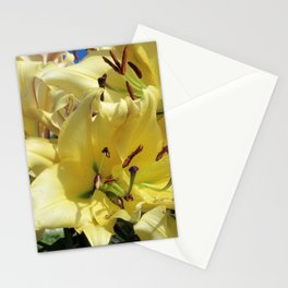 Trumpet Lily Stationery Cards