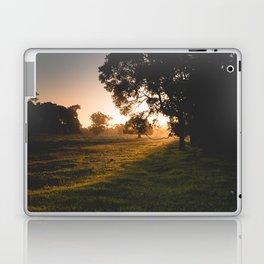 Golden Tree Laptop & iPad Skin