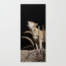 Howling to the Moon Canvas Print