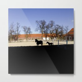 shadow horse Metal Print