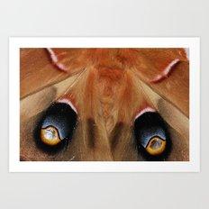 Polyphemus Giant Moth - Wing Detail Art Print