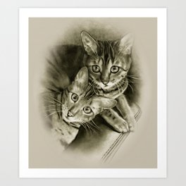 Bengal Kittens Drawing Art Print