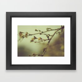 DID YOU NOTICE ME Framed Art Print