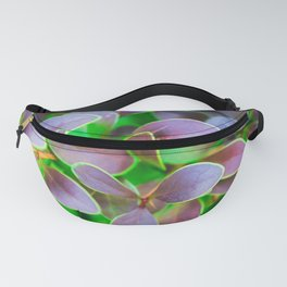 Vibrant green and purple leaves Fanny Pack