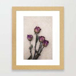 four dried roses Framed Art Print