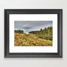 Whiteford Burrows Nature Reserve Framed Art Print
