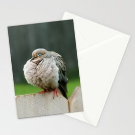 Blink! Stationery Cards