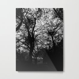 SAKURA2018 Japan photography Metal Print
