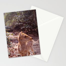 Deer on the Mountain Stationery Cards