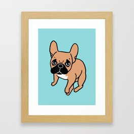 The Cute Black Mask Fawn French Bulldog Needs Some Attention Gerahmter Kunstdruck