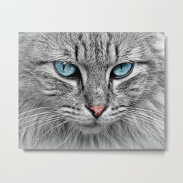Cat Look Metal Print