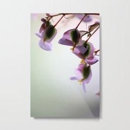 Orhidea Metal Print