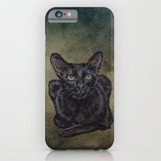 Cat Painting 16 iPhone 6s Slim Case
