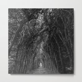 The Haunted Forest Path Black and White Photographic Art Print Metal Print