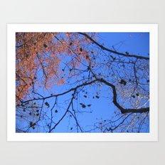 AutumnTreeExplosion I Art Print