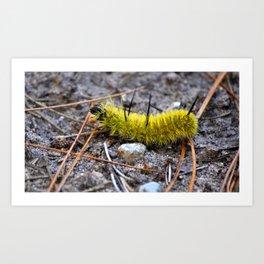 Caterpillar Yellow  Art Print