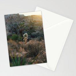Desert Light Stationery Cards