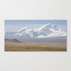 Tibetan Earth and Ice Canvas Print