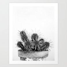 Nature IV cactus Art Print