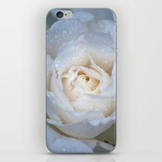 Soft Rose iPhone & iPod Skin