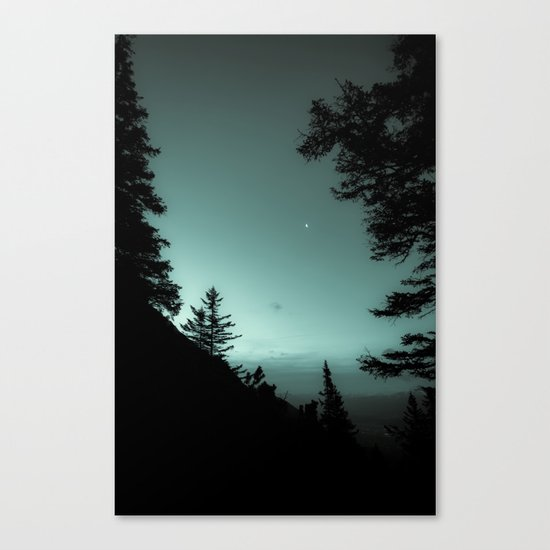 Moonlight Poem Canvas Print