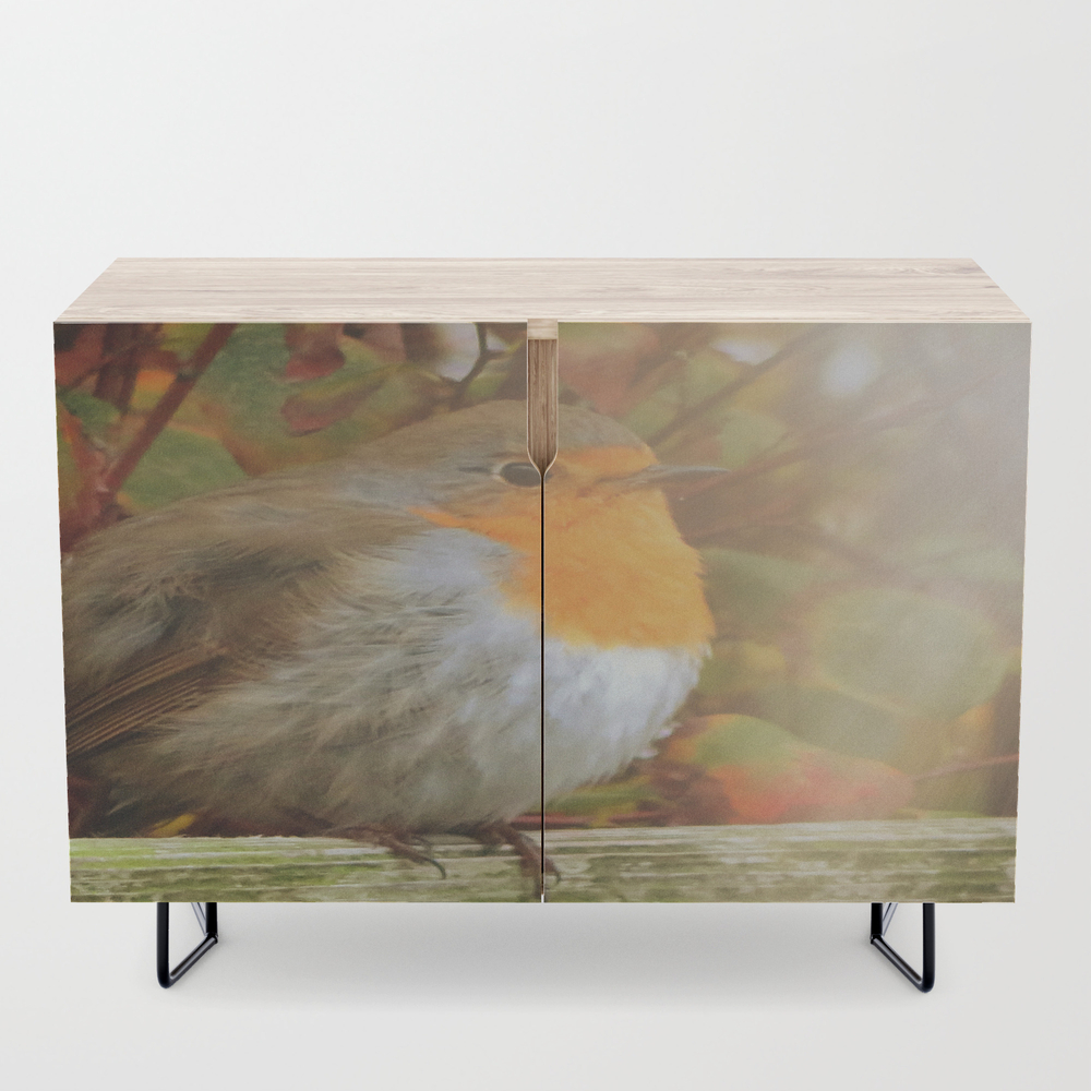 Robin Redbreast Credenza by Julianarw (CDZ10038222) photo