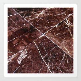 Brown Granite Tiles Art Print