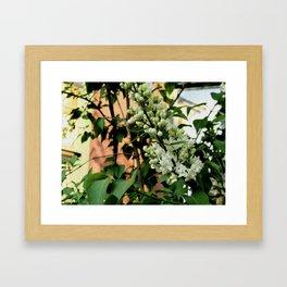 June Flowers Framed Art Print