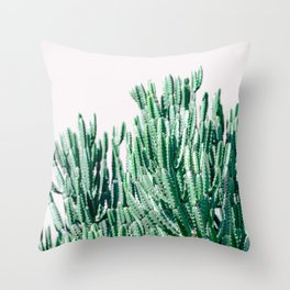 A Gathering of Cacti Throw Pillow