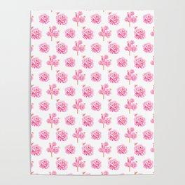 Rose Pop Pattern Poster