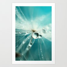 Dandy Starburst Drop Art Print
