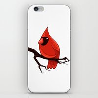 cardinal iPhone & iPod Skins featuring Cardinal by David Lanham