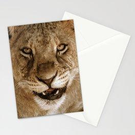 cute lion cub Stationery Cards