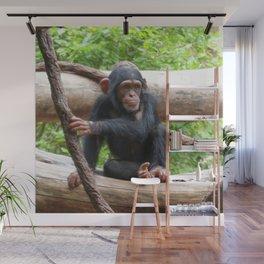 Chimpanzee_20150503_by_JAMFoto Wall Mural