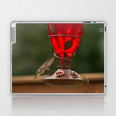 Hummingbird Legend Laptop & iPad Skin