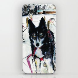 Before the husky ride iPhone Skin