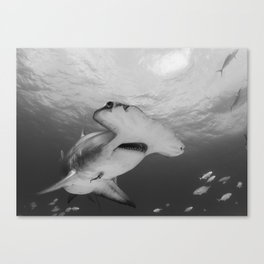 Greatness in Black & White Canvas Print