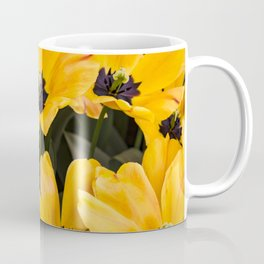 Field of Wide Open Yellow Tulips with Black Centers in Amsterdam, Netherlands Coffee Mug
