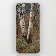invierno iPhone & iPod Skin