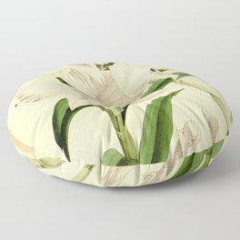 Dendrobium infundibulum Curtis' 90 (Ser. 3 no. 20) pl. 5446 (1864) Floor Pillow