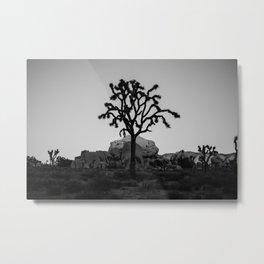 Joshua Tree Metal Print
